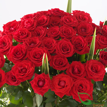 Red roses arrangement for Christmas in HCM city